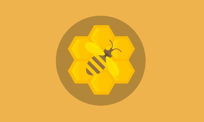 """Любительское пчеловодство с """"0"""""""